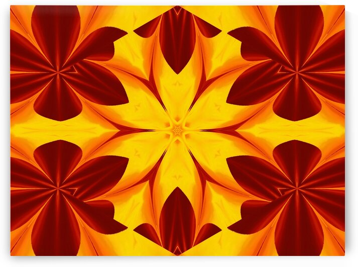 Fire Flowers 46 by Sherrie Larch