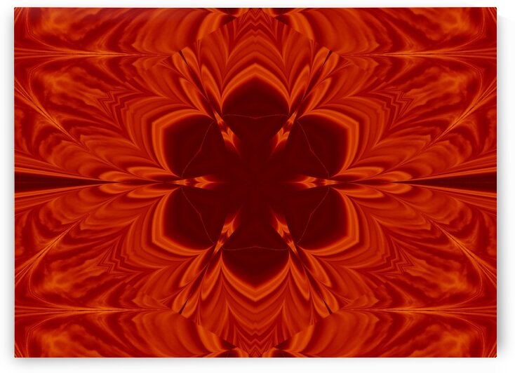 Fire Flowers 61 by Sherrie Larch