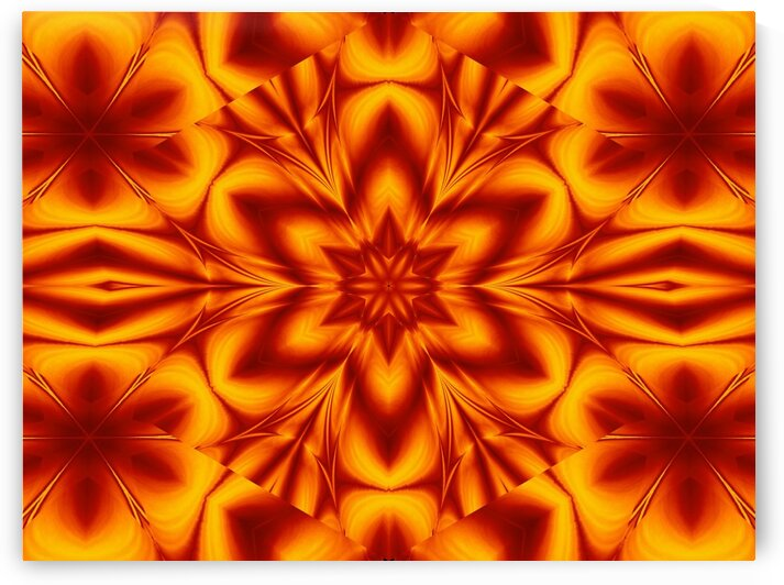 Fire Flowers 76 by Sherrie Larch