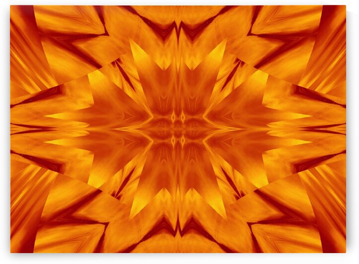 Fire Flowers 116 by Sherrie Larch