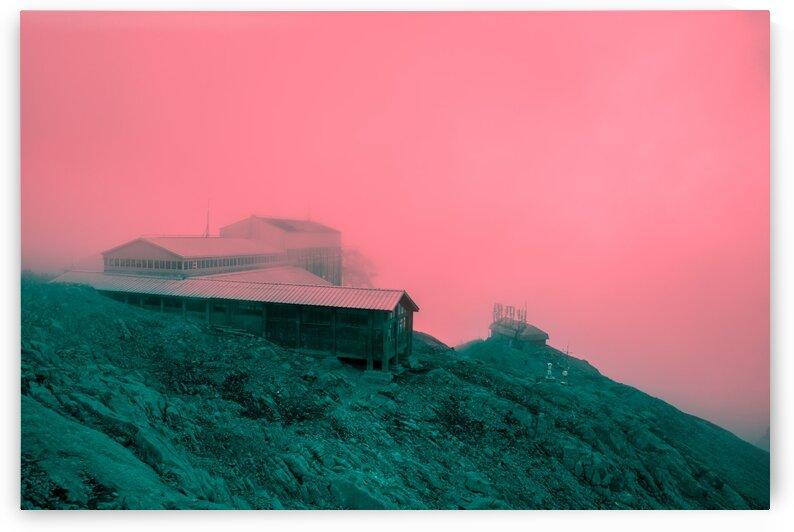 Firn by Jonas daley
