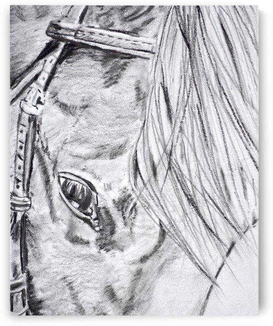 Horse  by Regan J Smith