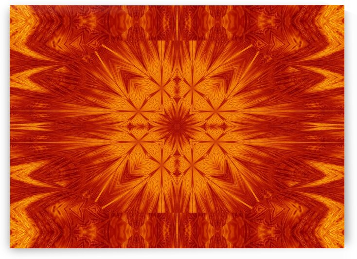 Fire Flowers 169 by Sherrie Larch