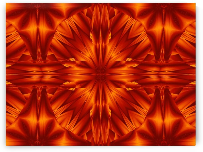 Fire Flowers 186 by Sherrie Larch