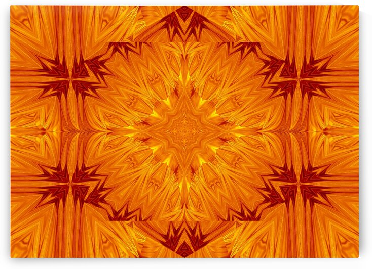 Fire Flowers 201 by Sherrie Larch