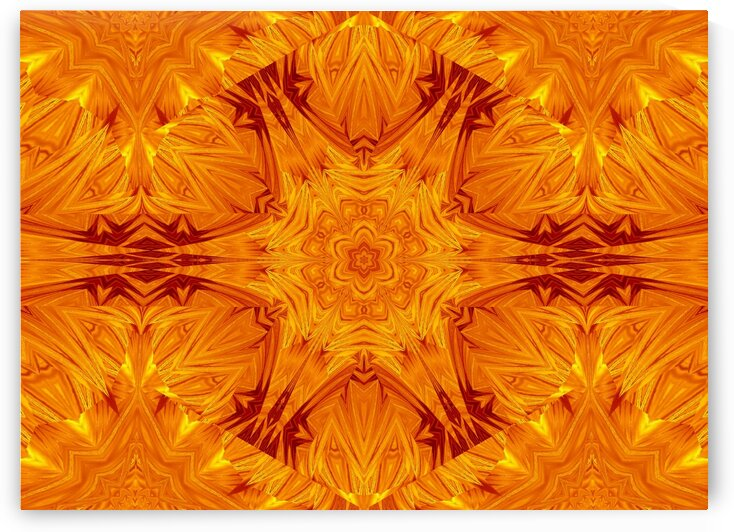 Fire Flowers 202 by Sherrie Larch