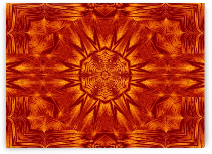 Fire Flowers 221 by Sherrie Larch