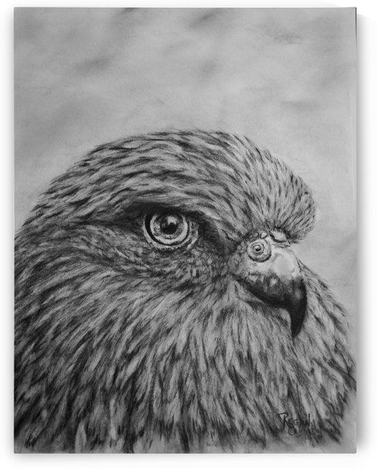 Bird by Regan J Smith