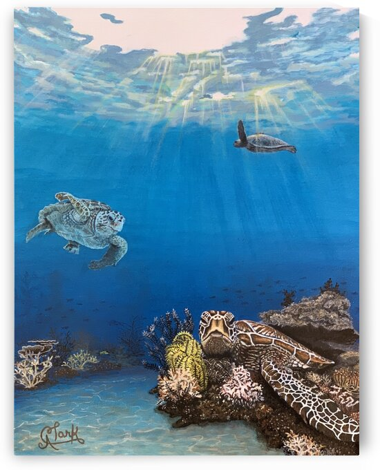 Under the Sea by Clark Fine Art