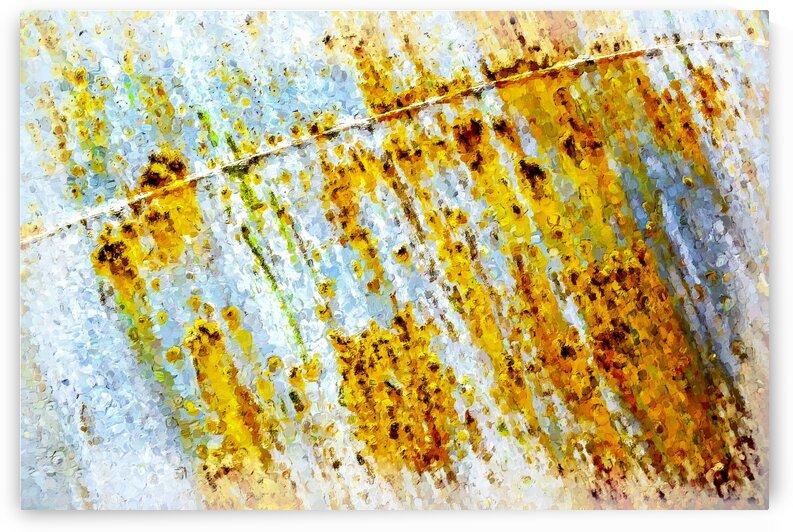 Rusty Barrel by Carmel Studios