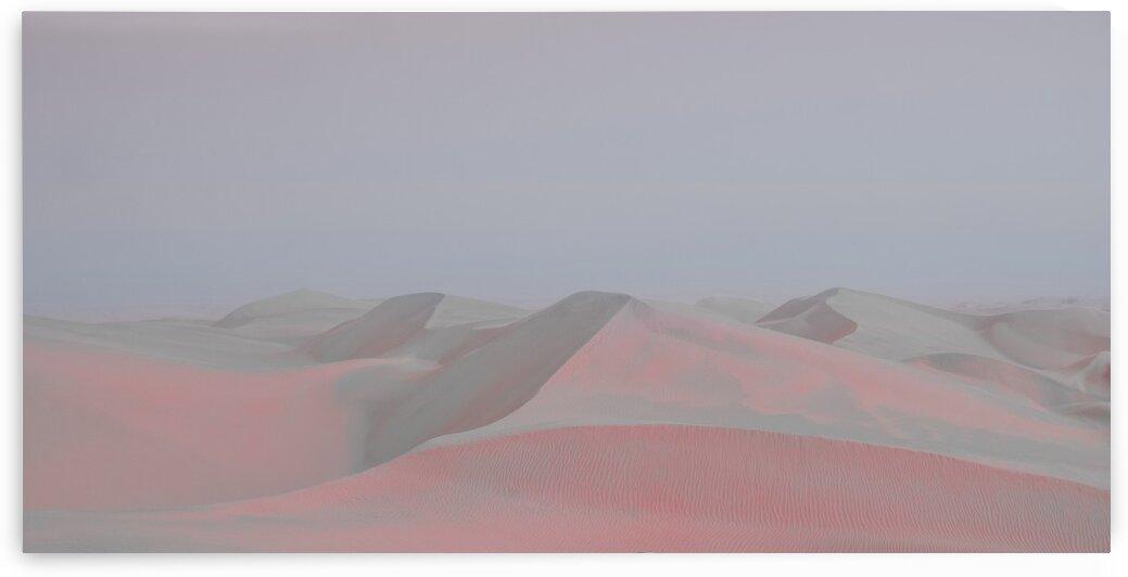 Misty Desert by Jonas daley