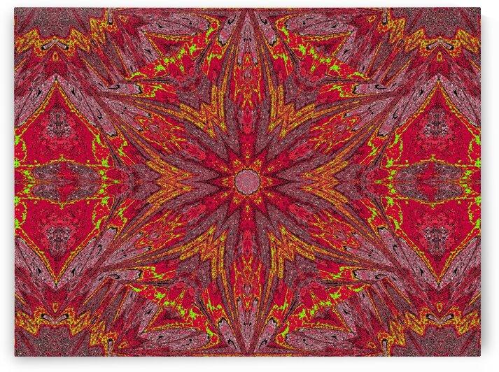 Sophornitella 79 by Sherrie Larch