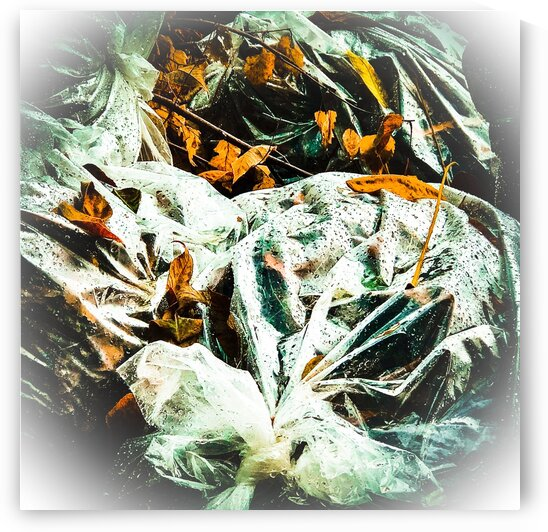 Bags of Leaves by BotanicalArt ca