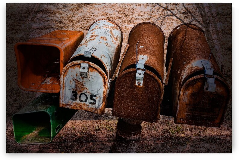 US Mail Boxes by BotanicalArt ca