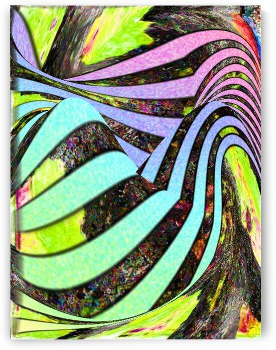 Yipes Its stripes by Helmut Licht