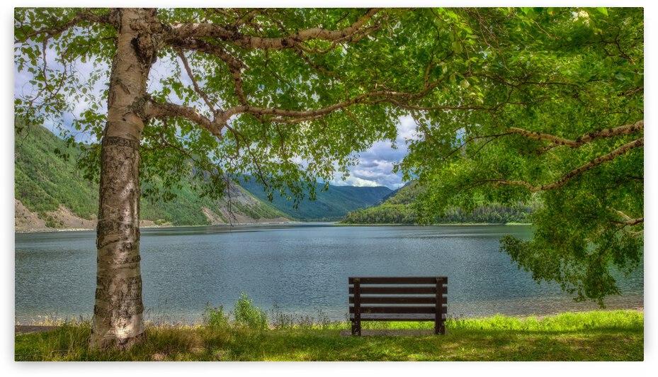 Le banc du lac by Glenn Albert