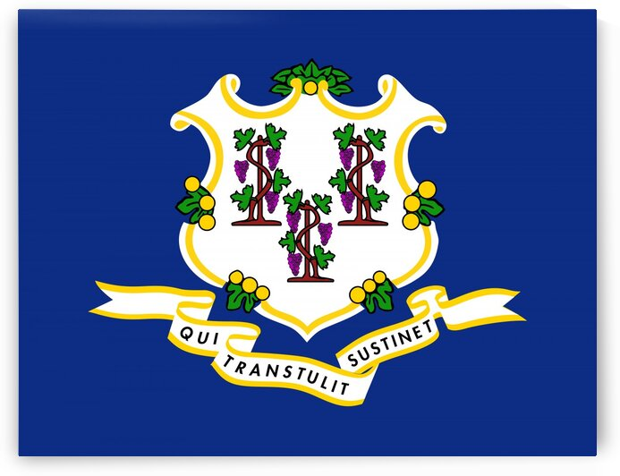 Connecticut State Flag by Fun With Flags
