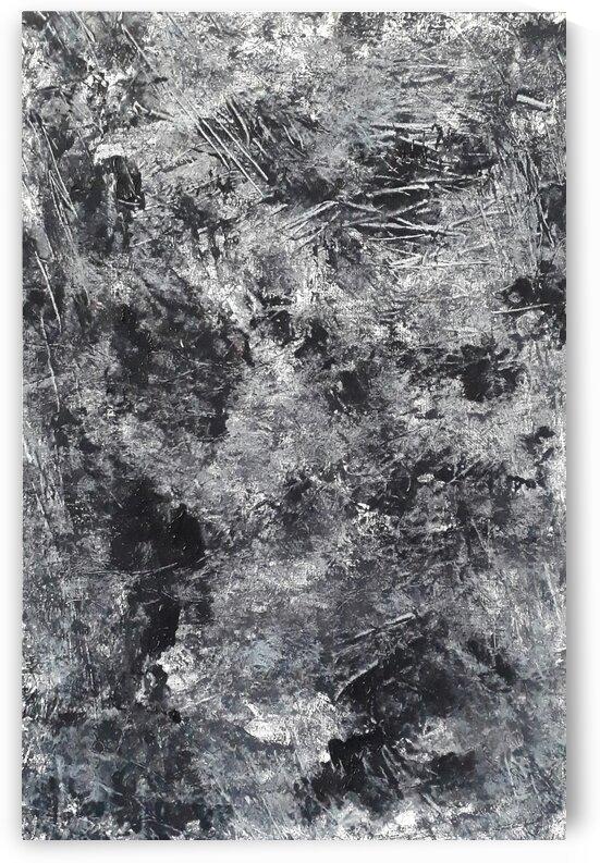 Schwarz Weiss by Irene Ragoss