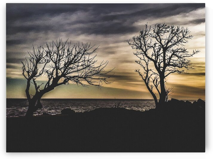 CoastalSunsetSceneatMontevideoCityUruguay by Daniel Ferreia Leites Ciccarino