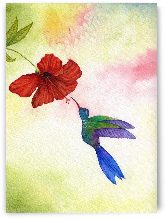 Colibri by Feerie