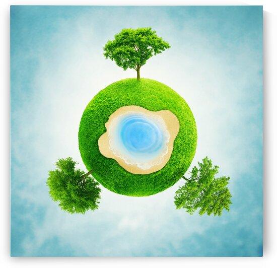 greenball_2 by Elena Vizerskaya