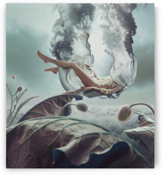shyGirl by Elena Vizerskaya