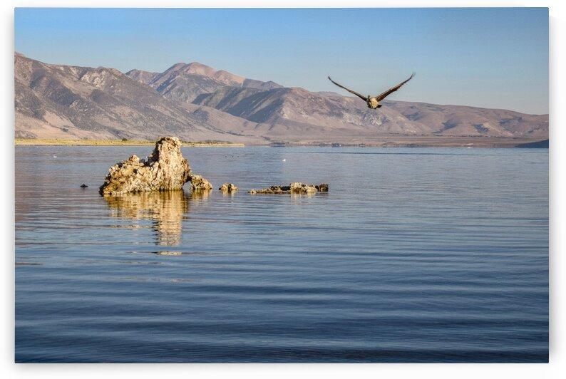 Mono Lake by Robert Knaskov