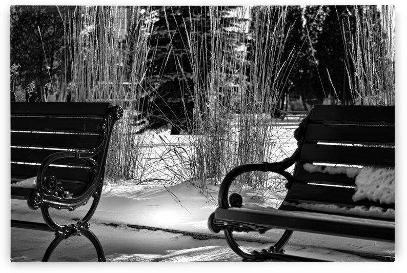 Entre deux saisons by Annie St-Pierre Photographie Artiste Photographe