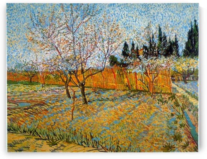Peach Trees by Van Gogh by Van Gogh