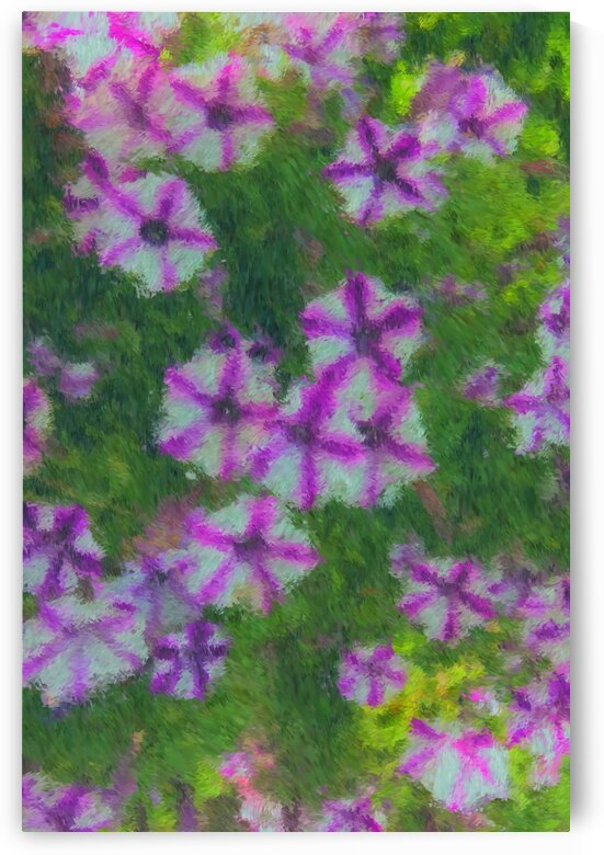 Woodstock Petunias_Painting by Bob McCulloch