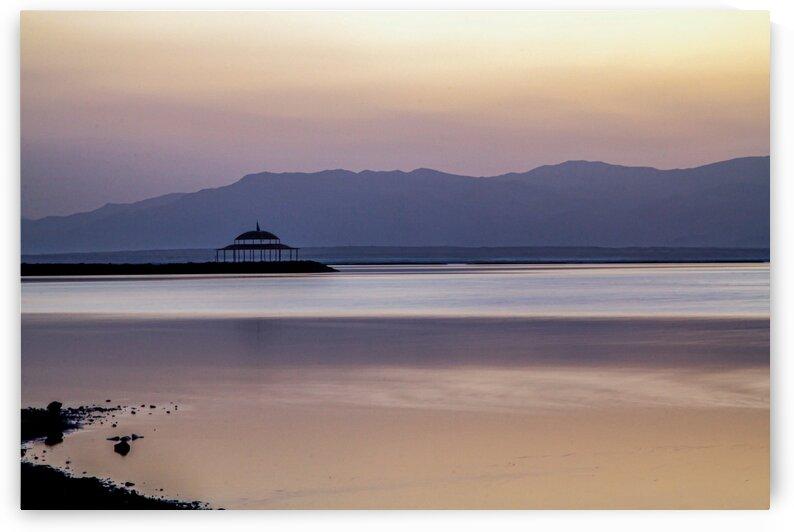 Dead Sea by Brendan McMillan