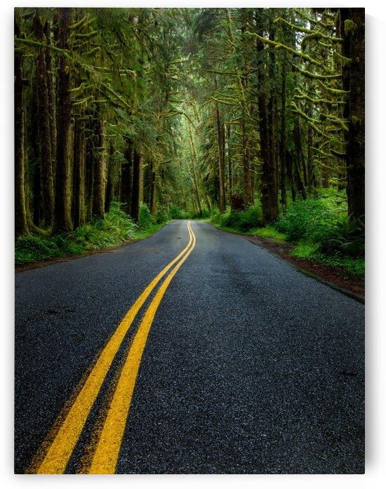 Road Less Traveled by Brendan McMillan