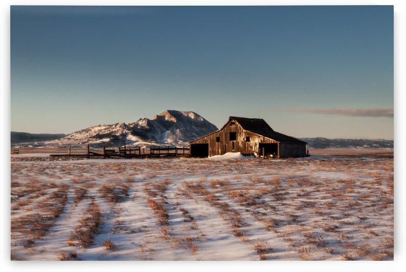 Frozen Barn by Brendan McMillan