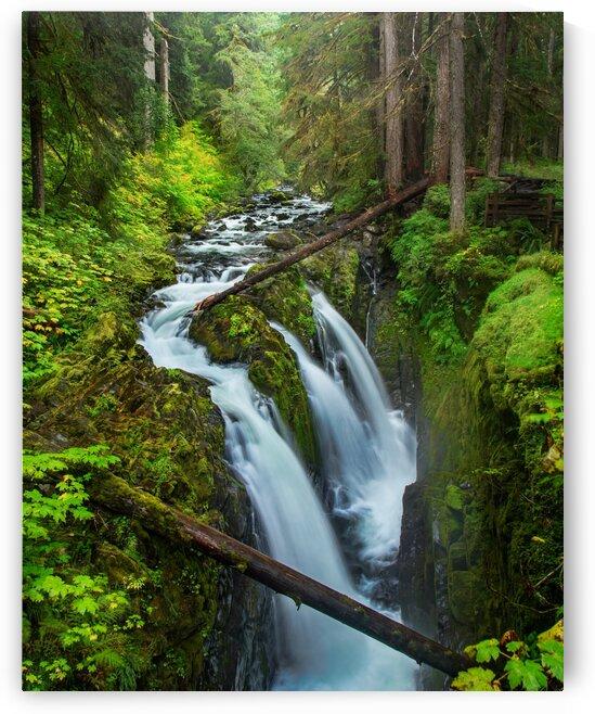 Verdant Falls by Brendan McMillan