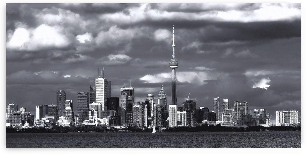 Toronto skyline. by Tracy Bennett
