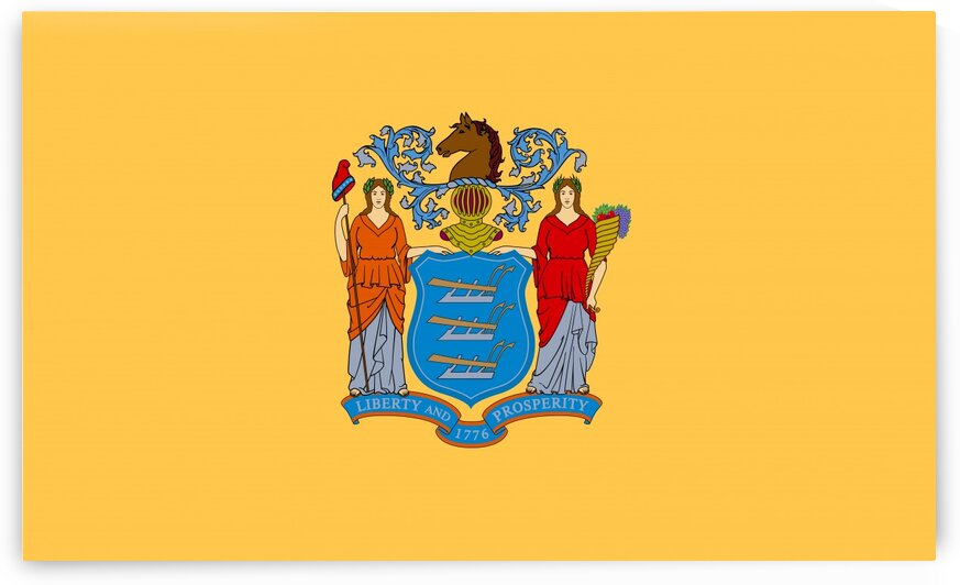 New Jersey State Flag by Fun With Flags
