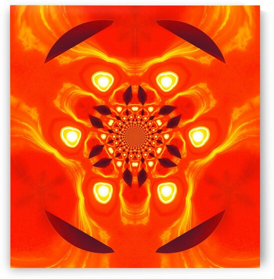 Fire Spider Scarab 3 by Sherrie Larch