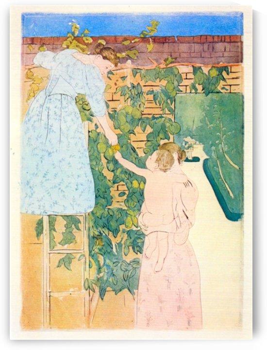Picking Fruit by Cassatt by Cassatt
