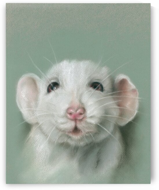 Sweet Faced White Rat Pet Portrait by MM Anderson