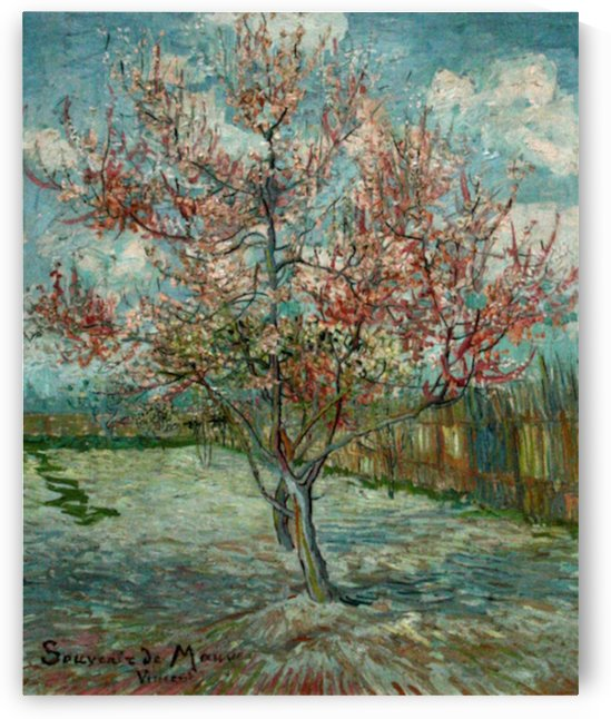 Pink Peach Trees Souvenir de Mauve by Van Gogh by Van Gogh