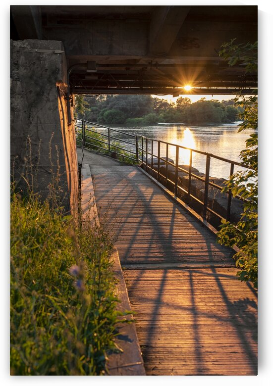 BridgeBoardwalk by Cathie Wheeldon