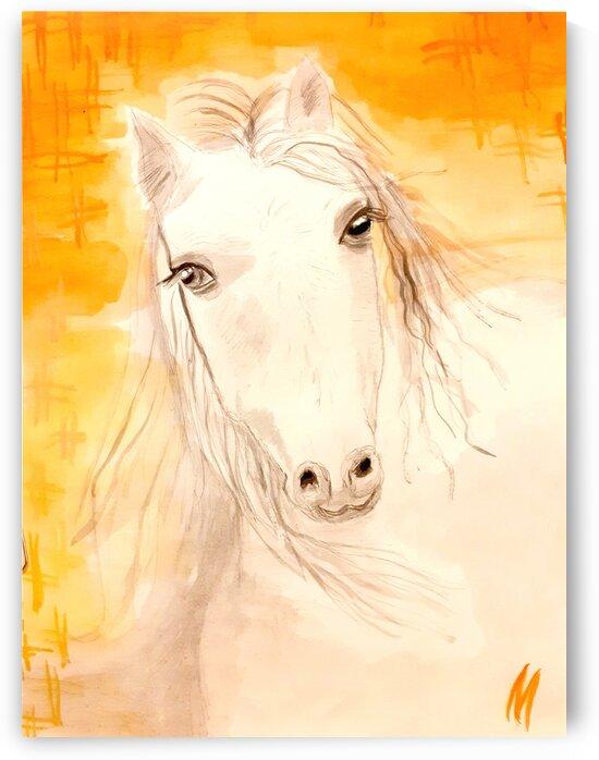 Gorgeous White Horse  by Maltez