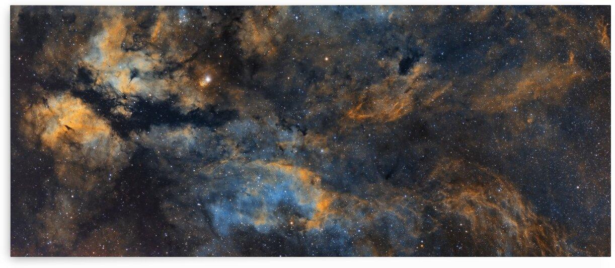 Gamma Cygni Nebula by Bradley Craig