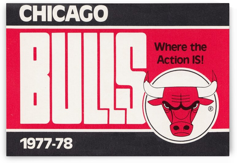 1977 Chicago Bulls by Row One Brand