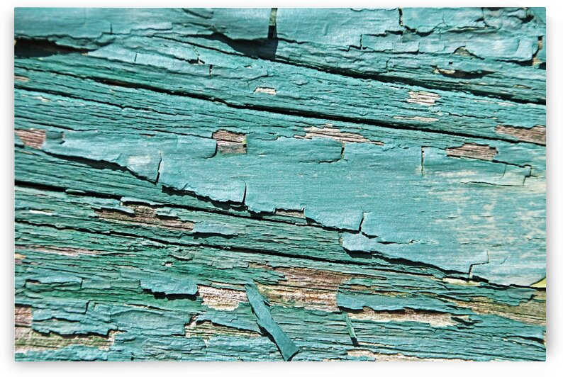 Greenish Peeling Paint Abstract by Deb Oppermann