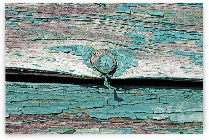 Peeling Paint by Deb Oppermann