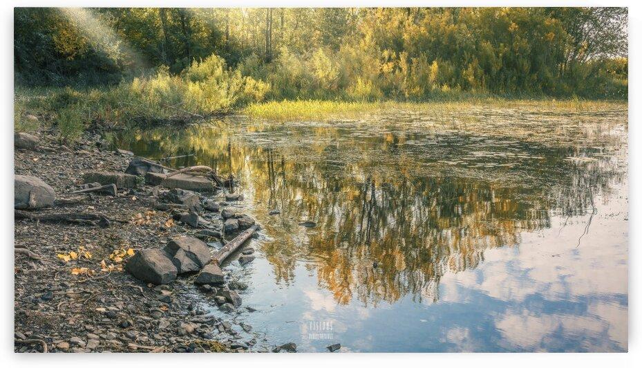 Monet style 4 by Daniel Thibault artiste-photographe