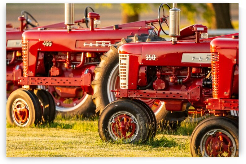 Farmall Tractors by Dylan Brew Photography