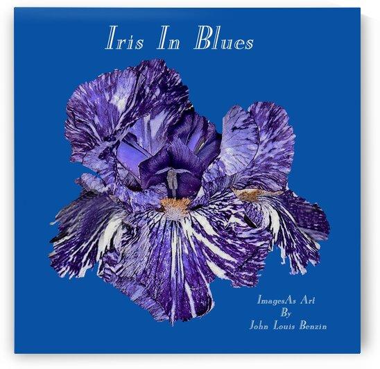 Iris In Blues by ImagesAsArt By John Louis Benzin