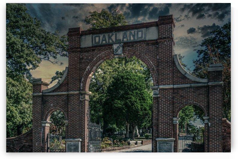 OaklandCemetery Edit_Luminar4 edit by Darryl Brooks